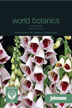 Foxglove (Digitalis) Pams Choice