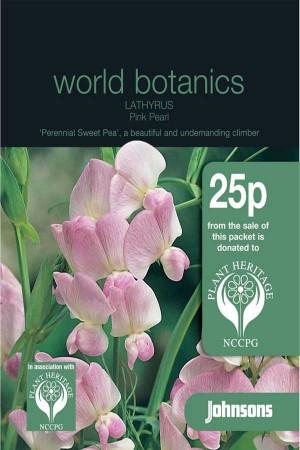 Sweet Peas (Lathyrus) Pink Pearl