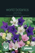 Platycodon Grandiflora
