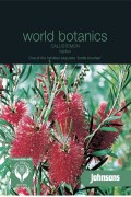 Callistemon Rigidus - Bottlebrush seeds