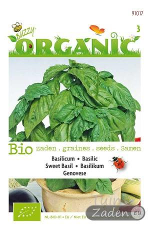 Genovese organic Sweet Basil seeds