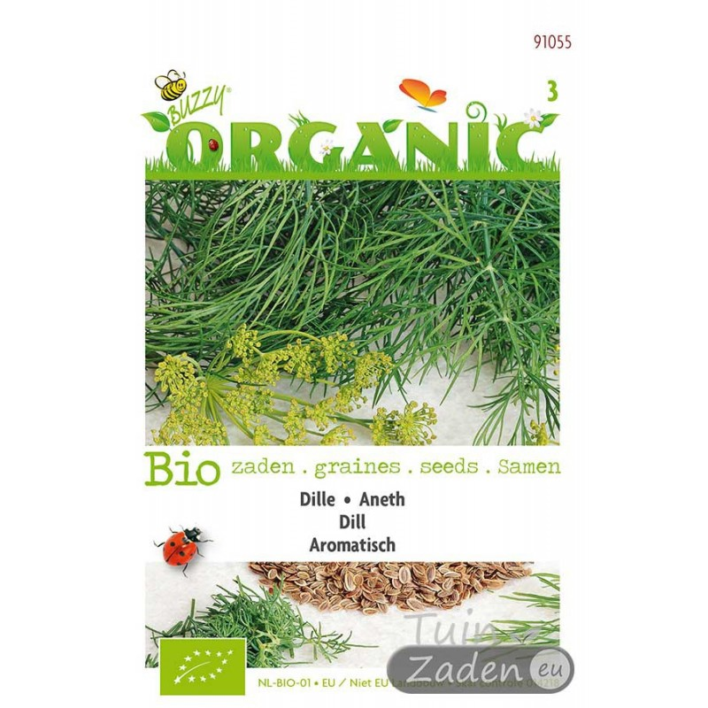 Organic seeds Dill