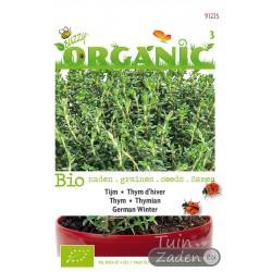 Organic seeds Thym German Winter