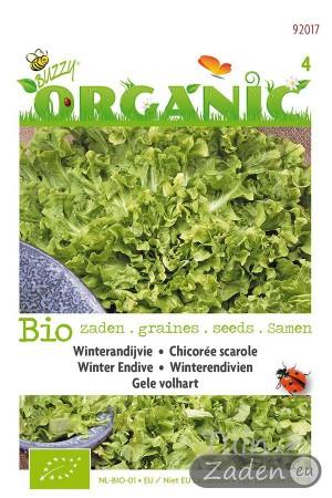 Biologische zaden Winterandijvie Gele Volhart