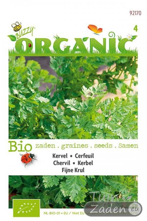 Kervel Fijne Krul Organic - Biologische Kervel zaden