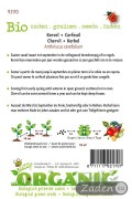 Organic seeds Chervil