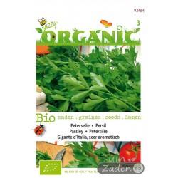 Organic seeds Gigante d Italia Parsley