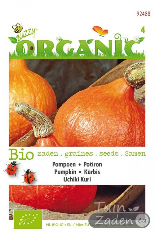 Uchiki Kuri pumpkin seeds - Organic
