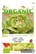 Organic seeds Meikoningin Lettuce