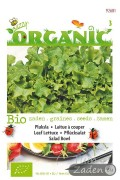 Organic seeds Salad Bowl Leaf Lettuce