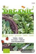 Noordhollandse Veldsla - Organic