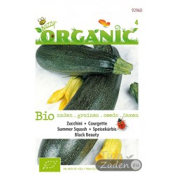 Organic seeds Black Beauty Summer Squash