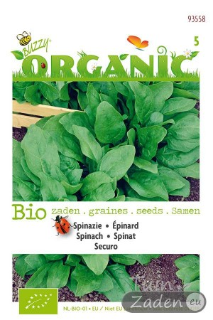 Organic seeds Securo Spinach