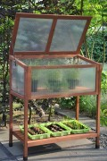 Red Leaf wooden greenhouse