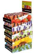 Strawberry - Display FUN Growing Kits