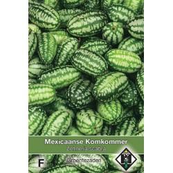 Mexican Sour Gherkin Zehneria scabra