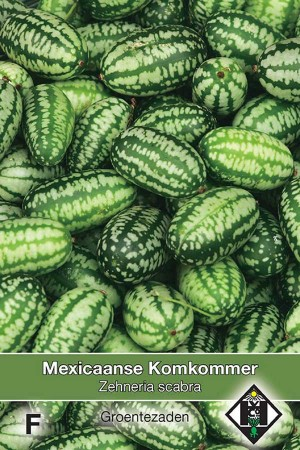 Mexicaanse Komkommer  Cucamelon - Zehneria scabra