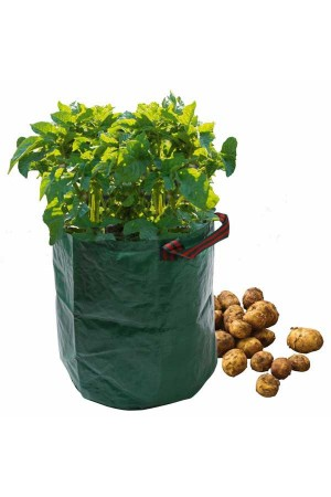 Growing Bags Potato Bag