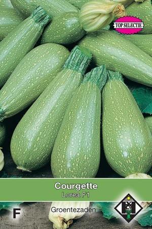 Courgette - Zucchini Zagora F1 / Lorea F1