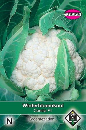 Cauliflower Corella F1 hybrid