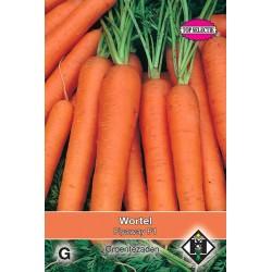 Carrots Wortel Flyaway / Resistafly F1