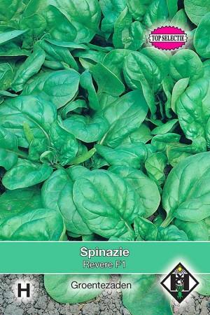 Spinach Revere F1