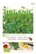 Lemon Balm Organic Seeds