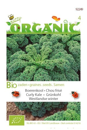 Organic seeds Westlandse Winter Curly Kale