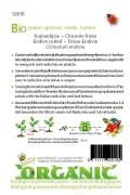 Organic Endive - Grosse Pancalière Curled Endive seeds