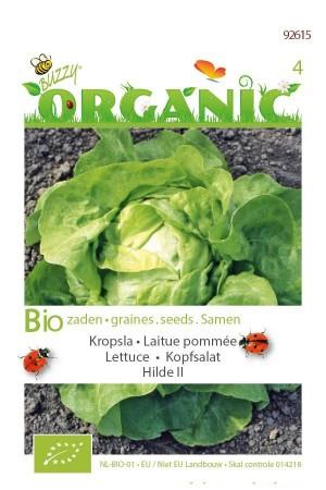 Organic seeds Hilde 2 Lettuce