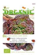 Wonder of 4 Seasons lettuce - Organic