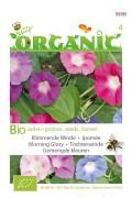 Klimmende Winde - Organic
