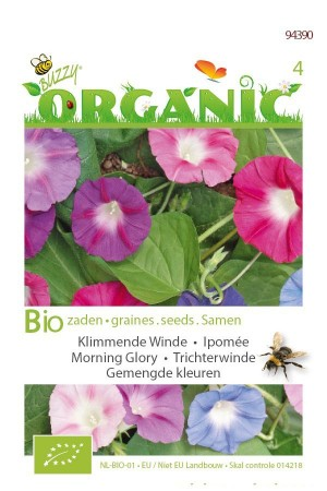 Organic seeds Morning Glory