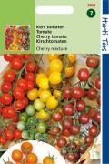 Bush Tomatoes Mix 4 Cherry tomatoes