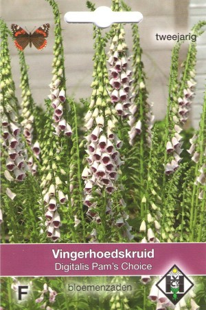 Vingerhoedskruid (Digitalis) Pams Choice