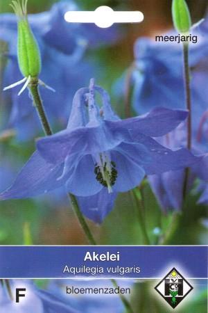 Akelei (Aquilegia) Blauwe Akelei