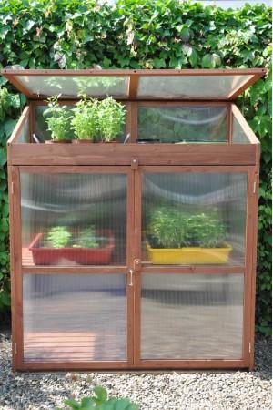 Patio Greenhouses Sweet Basil Patiokas