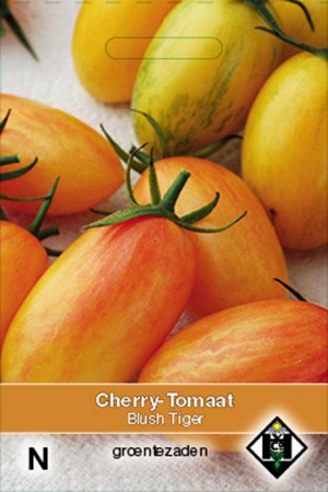 Cherry Tomatoes Blush Tiger