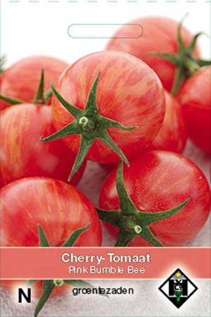 Cherry Tomatoes Pink Bumble Bee