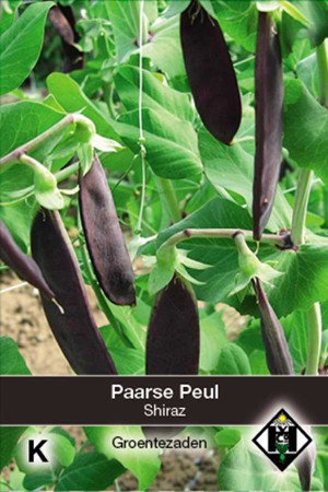 Peulen Shiraz Paarse Peul