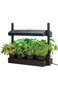 Sow & Grow in-house Micro Grow Light Garden 11 Watt - G187