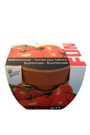 Groeikadootje Tomaten FUN