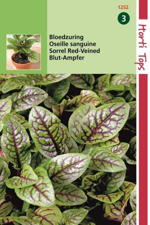 Spices & herb seeds Sorrel Red Veined