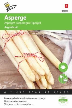 Asperges Argenteuil - Tuinasperge
