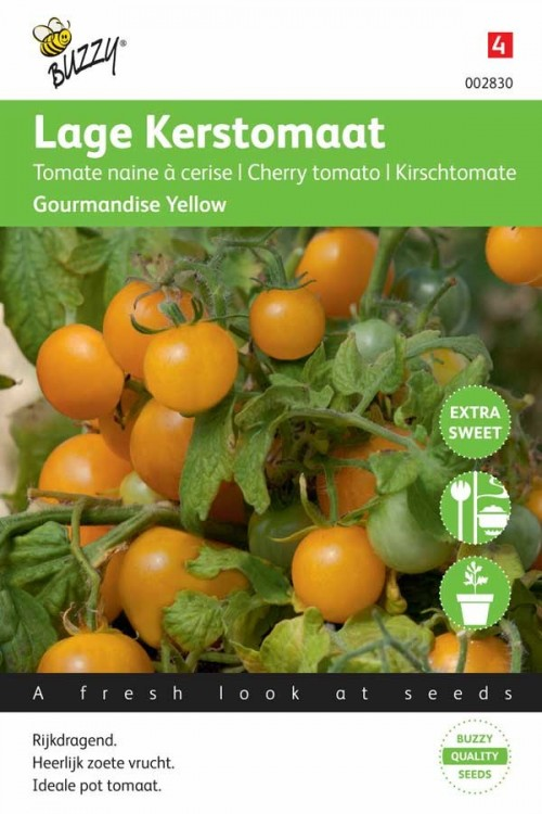 Gourmandise Yellow - Cherry Tomato