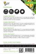 Courgette - Zucchini Black Forest F1
