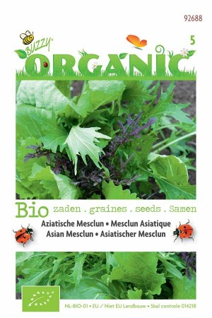 Organic seeds Mesclun