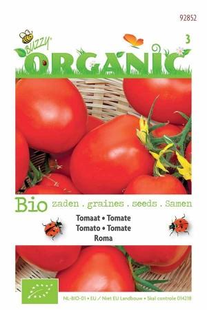 Pomodori Tomaten Zaden Tomato Roma