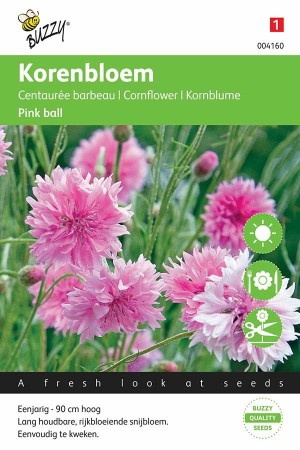 Korenbloem (Centaurea) Pink Ball
