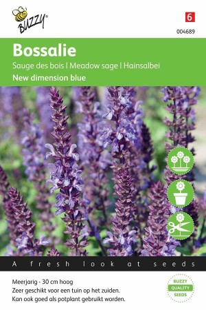 Meelsalie (Salvia) New Dimension Blue